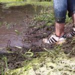 W240 Eileen soaking sneaker in muddy water